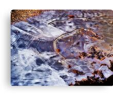Jack Frost Blew Through Canvas Print