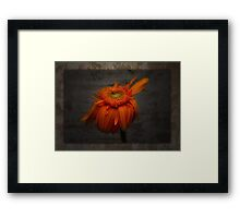 Everybody's reaching out for someone ... Framed Print