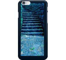 Stairway in Blue Springs iPhone Case/Skin