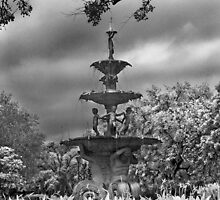 Water Fountain by Alycia Rowe