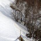 Winter Landscape by Catalina Negoita