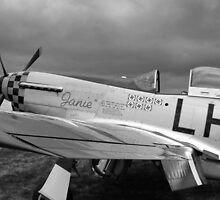 A WW2 P51 Mustang Fighter Plane by Chris L Smith
