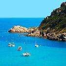 Boats in the Bay of Saint Tropez, Southern France by Atanas Bozhikov NASKO