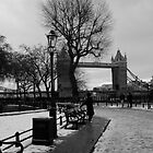 Oh the Snow, The Bridge, The Clothing and The Cold by Francisco Vasconcellos