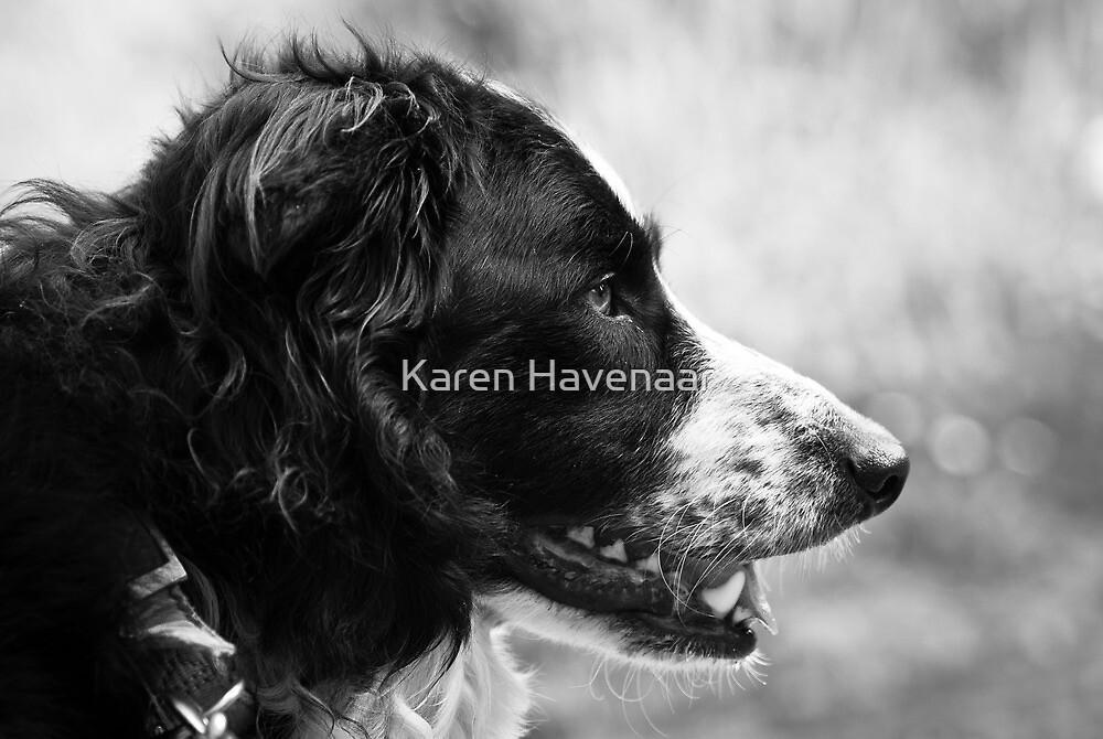 En Profile by Karen Havenaar