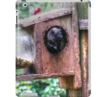 Squirrel Buffet iPad Case/Skin