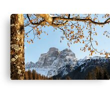 Dolomites mountain tree branches and leaves Canvas Print
