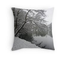 Snow in the water Throw Pillow