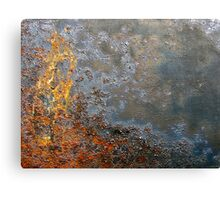 The Fires of Transformation Canvas Print