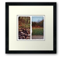 Pinhole Experiments in Autumn: Diptych Framed Print