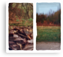 Pinhole Experiments in Autumn: Diptych Canvas Print
