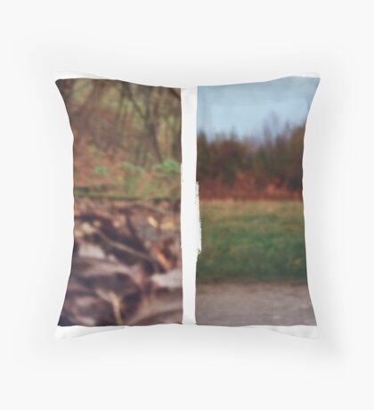 Pinhole Experiments in Autumn: Diptych Throw Pillow