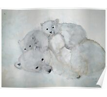 POLAR BEAR  +  CUBS Poster