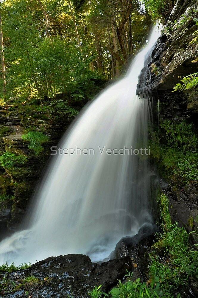 Fulmer Falls In Summer by Stephen Vecchiotti