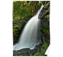 Fulmer Falls In Summer Poster