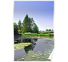 Village Pond, Tissington Poster