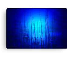 Under Water Mystery Canvas Print
