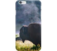 Buffalo Steam-Signed-#2170 iPhone Case/Skin