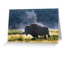 Buffalo Steam-Signed-#2170 Greeting Card