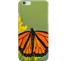 Monarch Butterfly - 43 iPhone Case/Skin