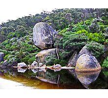 zen of nature Photographic Print