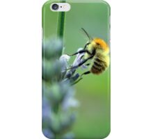 Bee with a Red Bonnet iPhone Case/Skin
