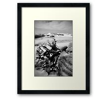 Adrift on Umzumbe beach, South Africa Framed Print