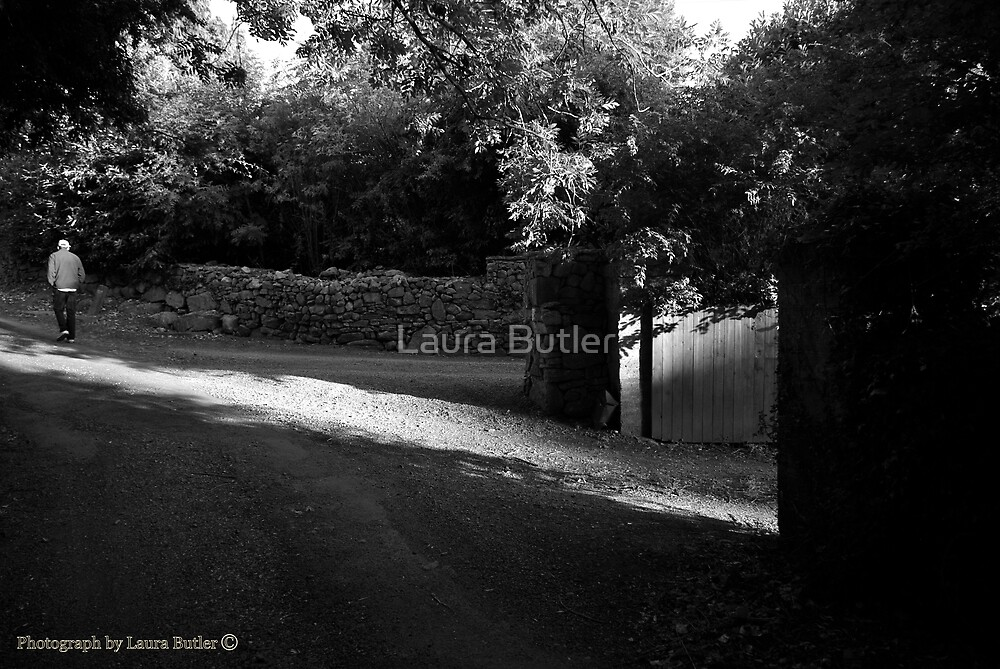 The Road Back, Evening Light, County Tipperary. by Laura Butler