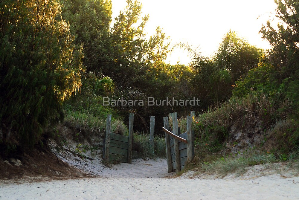 On the Beach - Bribie  Island by Barbara Burkhardt