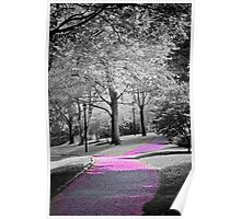 pink pathway in the park Poster