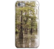 The Beauty Of The Swamp iPhone Case/Skin