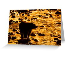 A Moment of Reflection Greeting Card