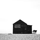 Shack - Dungeness Beach by PhotoBearUK