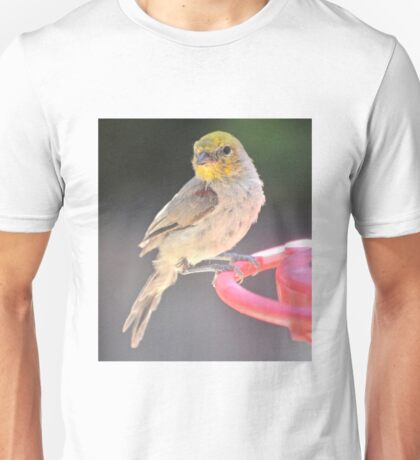 YELLOW HEADED WARBLER ON FEEDER PERCH Unisex T-Shirt