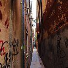 Venice Alley by Stephen Burke