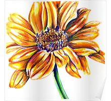 Yellow Flower Colored Pencil Drawing Poster