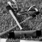 Polo mallets on the field by Daniel  Oyvetsky