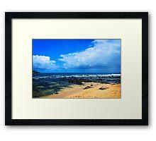Poi'pu Monk Seals Framed Print