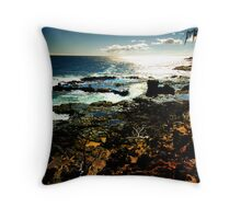 South Shore Seascape Throw Pillow