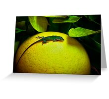 Grapefruit Green Jewel Greeting Card