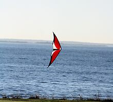 Kite Flying - Harkness State Park, Connecticut by Kristy-Lyn Faircloth