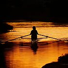 Sculler Sunset Silhouette  by HJIrvine