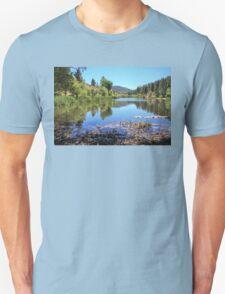Jackson Lake Unisex T-Shirt