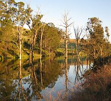 Donnybrook Waterhole by Adrian Kent