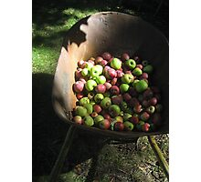 Apple Barrow Photographic Print