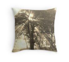 Light Streams Throw Pillow