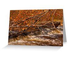 Autumn at Shohola Falls Greeting Card