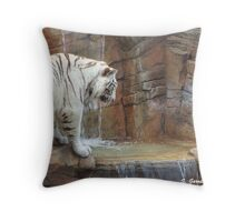 Playing in the water  Throw Pillow