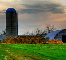 Down on the Farm by Larry Trupp