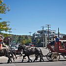 Stagecoach in Durango, Colorado, USA by Ann Reece
